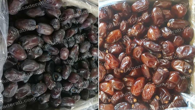 انواع خرما کلوته ایران