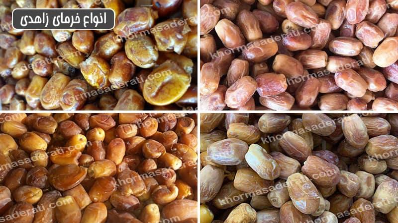 انواع خرما زاهدی ایران