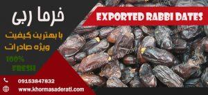 خرمای ربی صادراتی