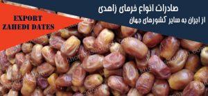 صادرات خرما زاهدی