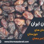 صادرات خرما استعمران