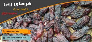 قیمت خرما ربی ارزان