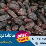 صادرات خرما ربی ایران به هند