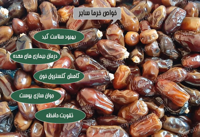 بهترین خرما سایر خوزستان