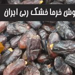 فروش خرمای خشک ربی