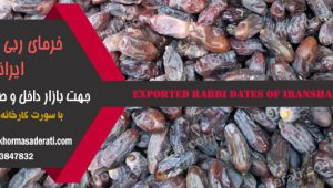 خرمای ربی صادراتی ایرانشهر