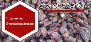 خرمای پیارم در استان بوشهر